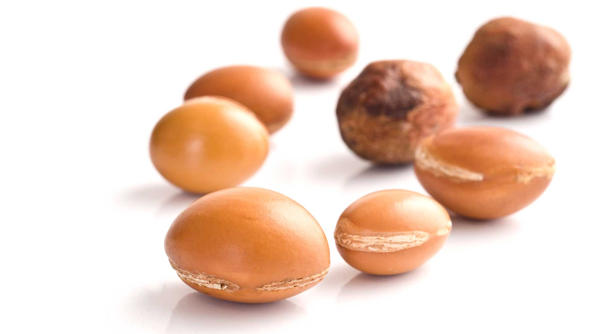 argan-seeds